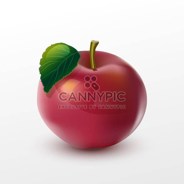 Vector illustration of red ripe apple with green leaf on white background - Free vector #125761