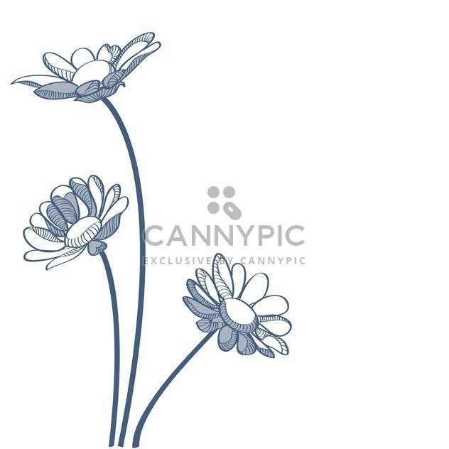 Vector illustration of blue camomiles on white background - Free vector #127271