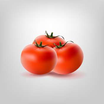 Vector illustration of three red tomatoes on white background - vector gratuit #128931
