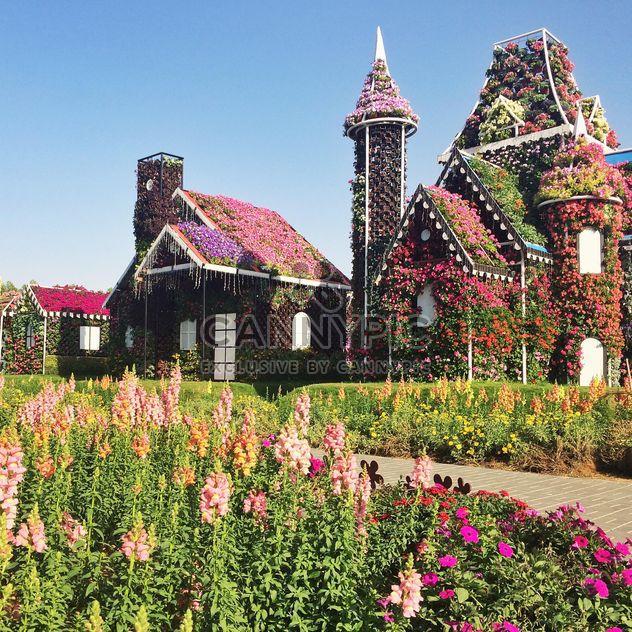 Парк цветов в Дубай, Объединенные Арабские Эмираты - бесплатный image #136691