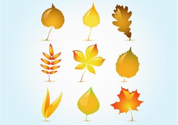 Glossy Autumn Leaf Vectors - Free vector #145671