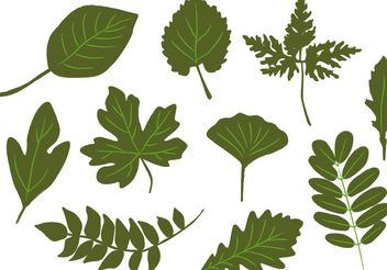 Hand Drawn Leaves Vectors - Free vector #145971