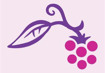 Raspberry - Free vector #146361