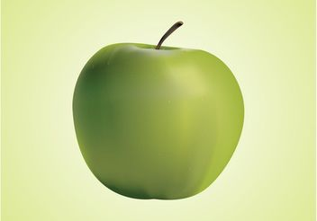 Realistic Vector Apple - Free vector #147561