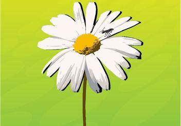 Daisy - vector gratuit #147841