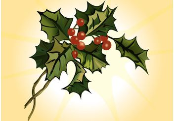 Mistletoe Cartoon - Free vector #147881