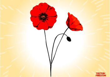 Poppy Flowers - vector gratuit #152651