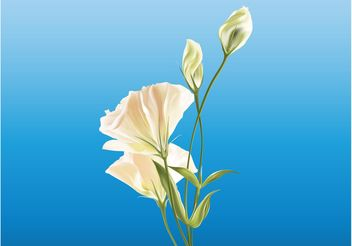 Realistic Flowers - Kostenloses vector #152691