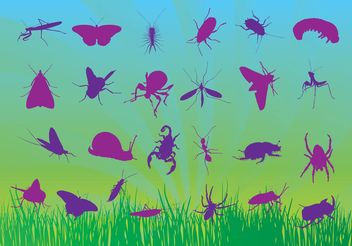 Free Insects Vectors - vector #157611 gratis