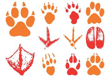 Animal Footprints - Free vector #157751
