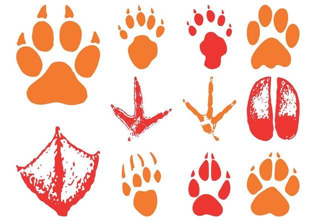 Animal Footprints - Free vector #157751