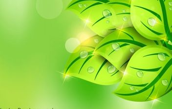 Green leaf spring background - vector gratuit #168441
