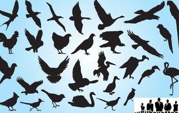 Silhouette Bird Pack - vector #173951 gratis
