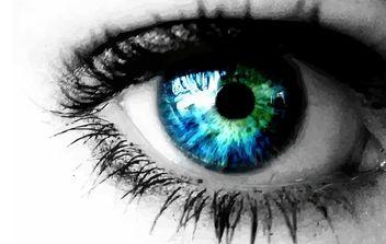Blue Eye Vector - Kostenloses vector #174441