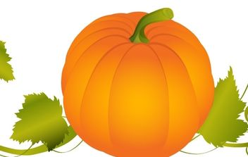 Pumpkin Vector Graphic - Free vector #179001