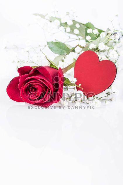 Corazón y rosa roja - image #182991 gratis