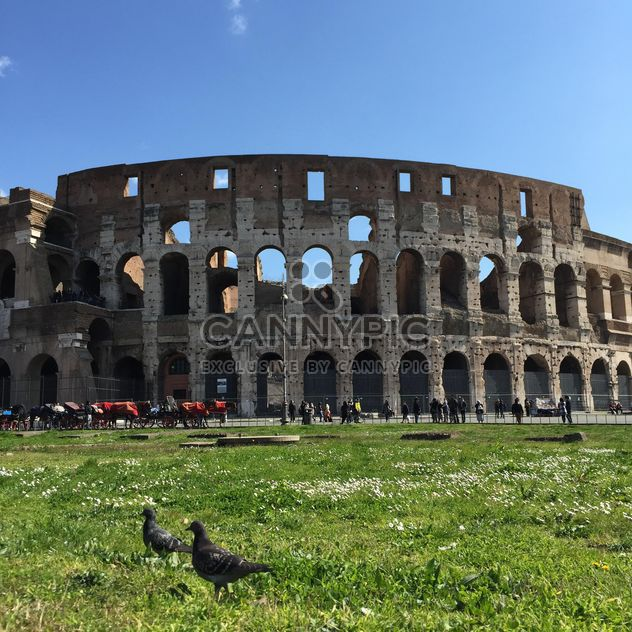 collosseum in rome, italy - Free image #183071