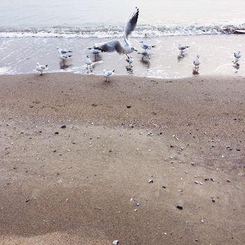 Sea - image gratuit #184211