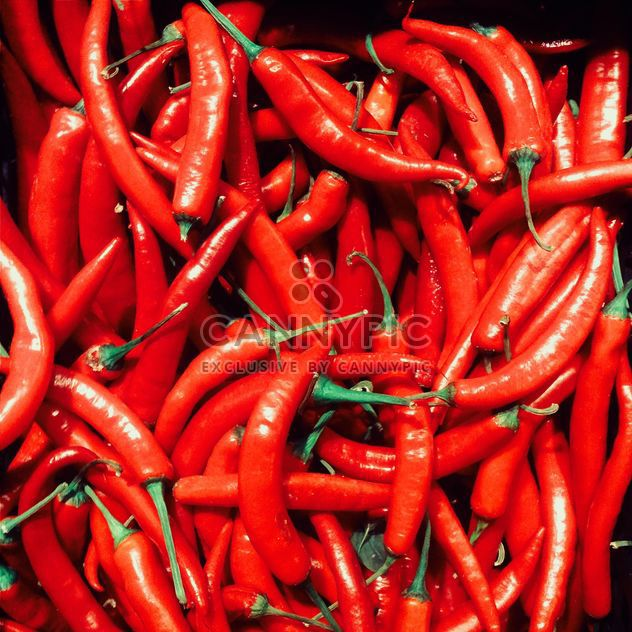 Red chili pepper - Free image #184481