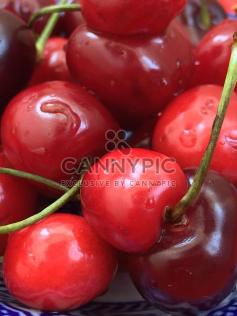cherries marco - Free image #185681