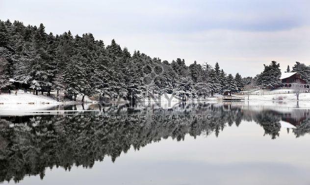 Пруд в зимний период - Free image #185951
