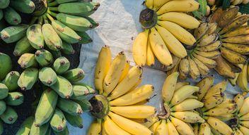 Bananas - Free image #186421