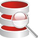 Поиск по базе данных - бесплатный icon #196601