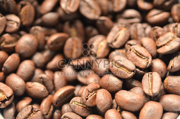 Coffee beans - Free image #198081