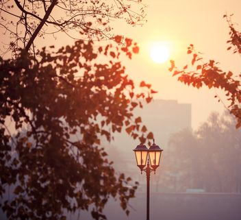 urban landscape with a lantern and trees - image #198561 gratis