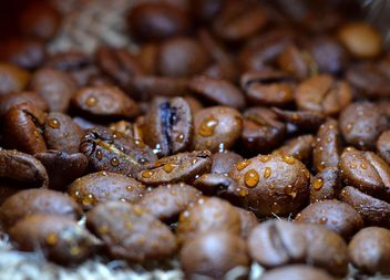 Coffee beans - Free image #201081