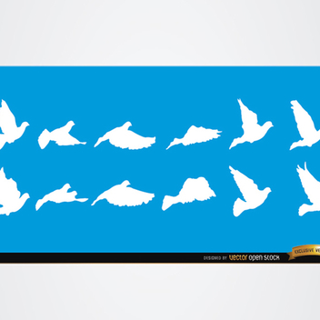 Dove and Bird Vector Silhouettes - Free vector #202221