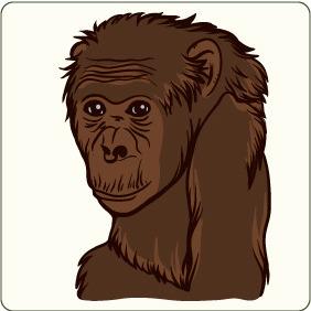 Monkey 1 - Kostenloses vector #206791