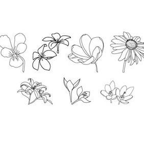 Hand Drawn-floral-vectors - Free vector #212981