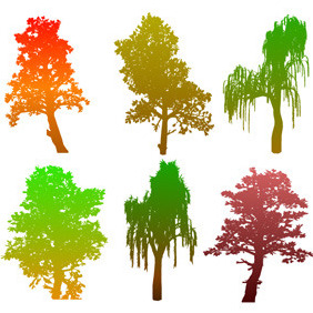 Colourful Tree Silhouettes - Free vector #213911