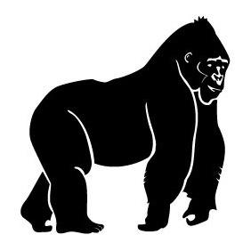 Gorilla Vector Image - vector gratuit #217271