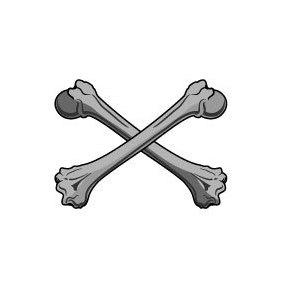 Bones Vector - Free vector #219721