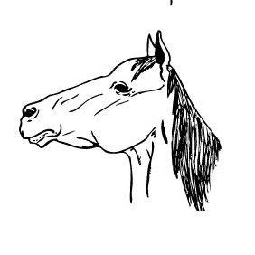 Horses - vector gratuit #223531