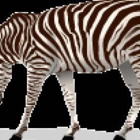 Zebra 2 - vector #223731 gratis