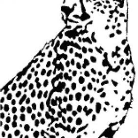 Cheetah Vector - vector gratuit #223741