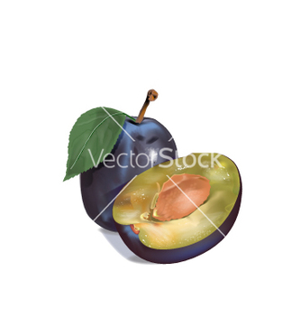 Free plum graphics vector - бесплатный vector #237471