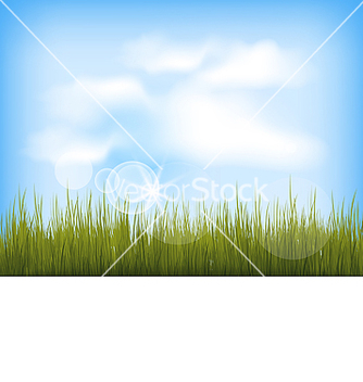 Free summer background with green grass blue sky clouds vector - Free vector #237911