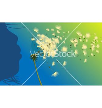 Free dandelion vector - vector #262831 gratis