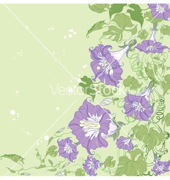 Free convolvulus card vector - Free vector #266821
