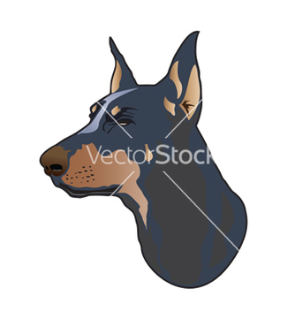 Free doberman dog vector - Free vector #267211