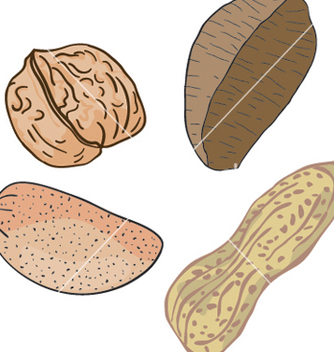 Free nuts vector - vector #269231 gratis