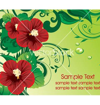 Free elegant template vector - бесплатный vector #269501