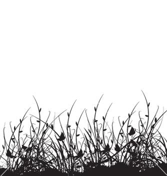Free wild flower garden vector - Kostenloses vector #270991
