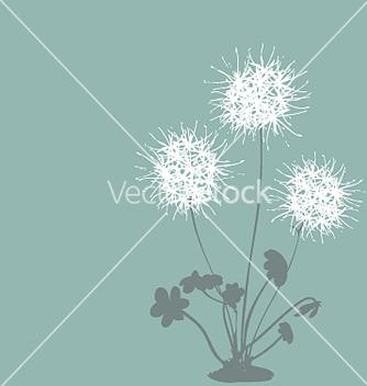 Free dandelion vector - vector #271441 gratis