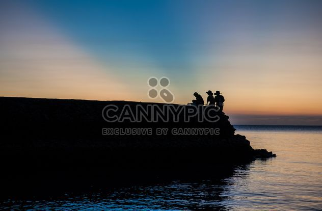 Silhouettes at sunset - Free image #271871