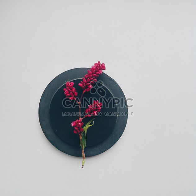 Sprig of flowers on black round stand - Free image #272171